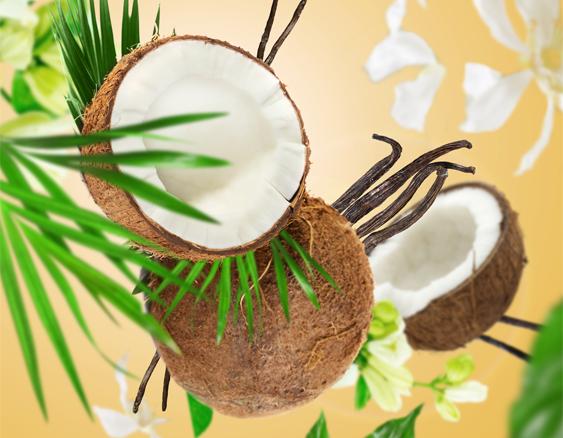 Coco Monoï